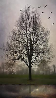 Mauve Photograph - Pennsylvania Autumn by Carol Leigh
