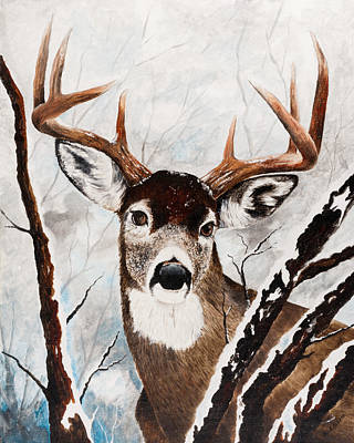 Painting - Pennsylvania White Tail by Paul Cubeta