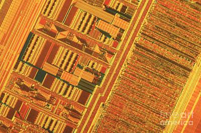 Pentium Computer Chip Print by Michael W. Davidson