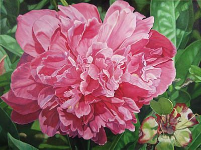Painting - Peony With Ant by - Harlan