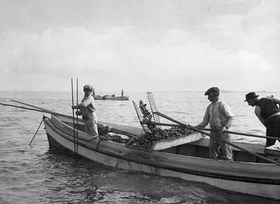 Oyster Photograph - People Tonging Oysters Near Nanticoke by Jacob Gayer