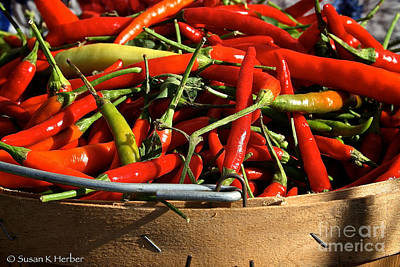 Peppers And More Peppers Art Print by Susan Herber