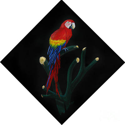 Macaw Painting - Perched Macaw Original by Peter Piatt