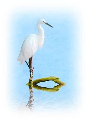 Egret Digital Art - Perched by Sharon Lisa Clarke