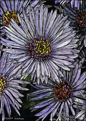 Perennial Asters Art Print by Robert Goudreau