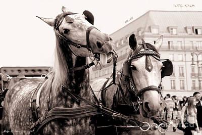 Performing Horses Art Print by Helge Peters