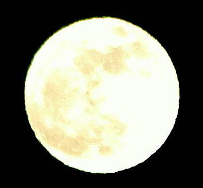 Photograph - Perigee Full Moon 2012 by Mia Alexander