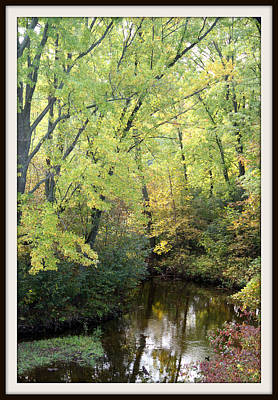 Photograph - Peshtigo River Approach by Mark J Seefeldt