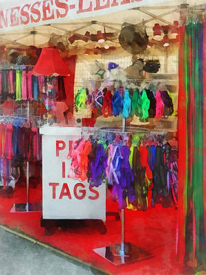 Leashes Photograph - Pet Leashes And Harnesses For Sale by Susan Savad