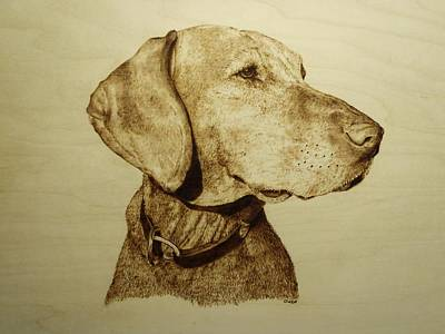Pyrography - Pet Portrait - Hunter by Adam Owen