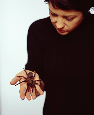 Pet Therapy Photograph - Pet Tarantula by Lawrence Lawry