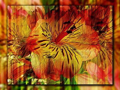 Shift Digital Art - Petal Paradigm by Tim Allen