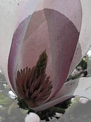 Stamen Digital Art - Petal Prose by Tim Allen
