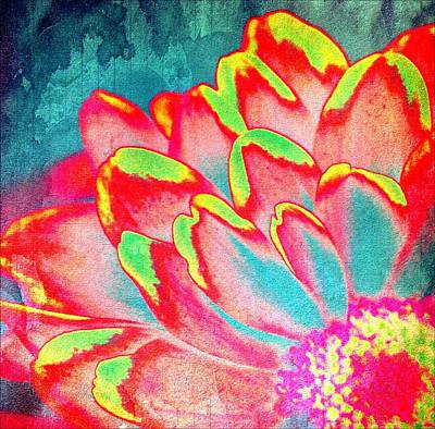 Petals Of Color Art Print by Cathie Tyler
