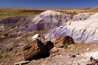 Photograph - Petrified Logs In The Badlands by Adam Jewell
