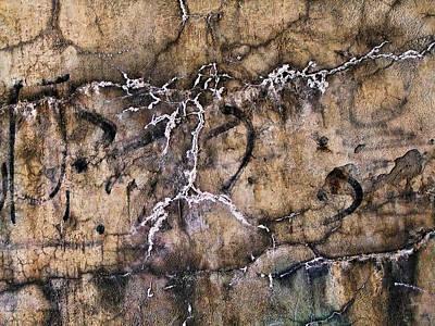 Photograph - Petroglyph 2 by Robert Knight