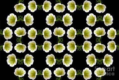 Digital Art - Petunias by Dale   Ford