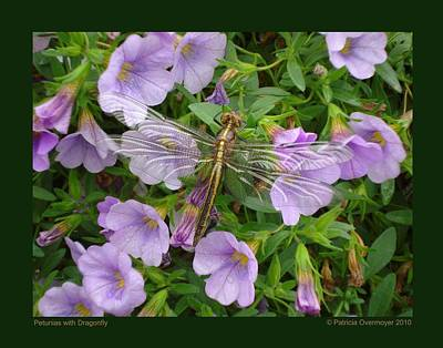 Petunias With Dragonfly Art Print by Patricia Overmoyer