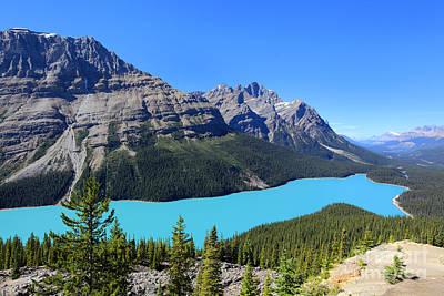 Peyto Lake Alberta Canada Art Print