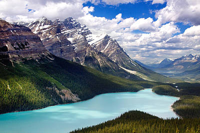 Photograph - Peyto Lake In Jasper by Julius Reque