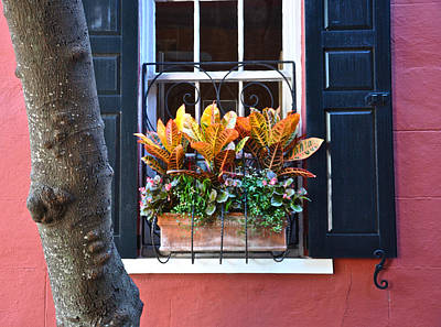 Photograph - Philadelphia  Alley Window Box by Lori Kesten