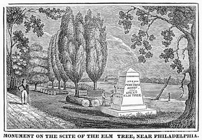 William Penn Treaty Elm Photograph - Philadelphia: Elm Monument by Granger