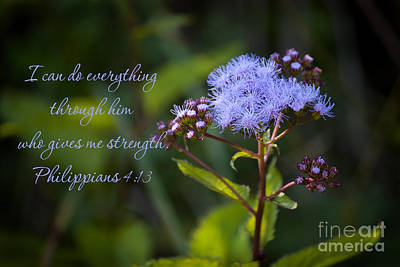 Photograph - Philippians Verse by Lena Auxier