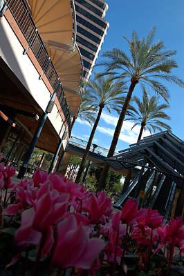 Photograph - Phoenix Arizona 9 by Jill Reger