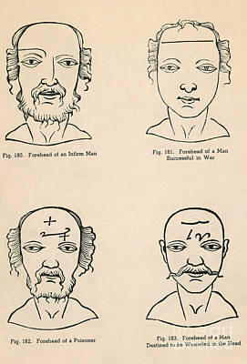 Long-lived Photograph - Physiognomy by Science Source