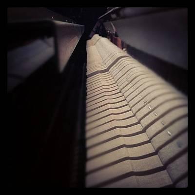 Piano Wall Art - Photograph - Piano Hammers. #picoftheday by Davis M