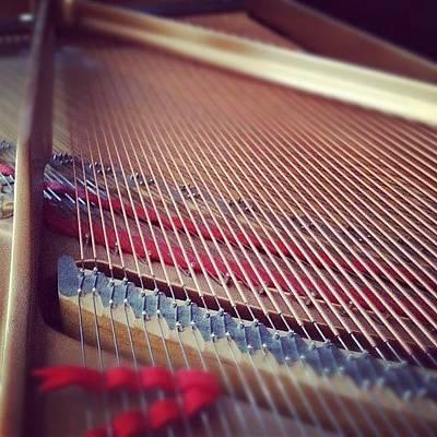 Piano Photograph - Piano Strings. #piano by Cheri Karafa