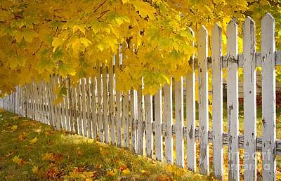 Photograph - Pickets by Idaho Scenic Images Linda Lantzy