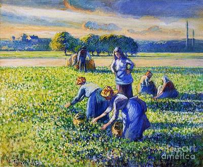 Painting - Picking Peas by Pg Reproductions