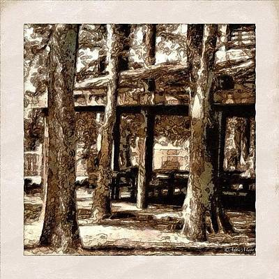 Iphone 4 Photograph - Picnic Grove - Painted & Block Printed by Photography By Boopero