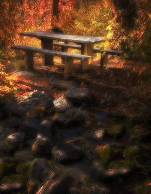 Dappled Light Photograph - Picnic Table by Utah Images