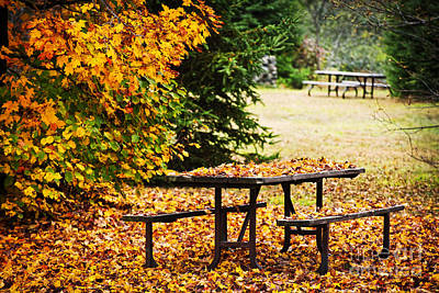 Picnic Table With Autumn Leaves Art Print by Elena Elisseeva