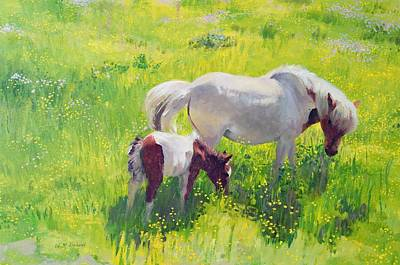 Piebald Horse And Foal Art Print by William Ireland