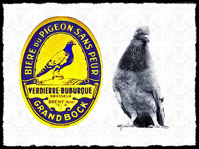 Pigeon Grand Bock Print by Bill Cannon