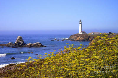 Pigeon Point Lighthouse California Coast Art Print by Mike Nellums