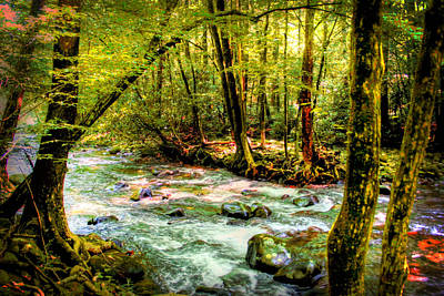 Photograph - Pigeon River by Barry Jones