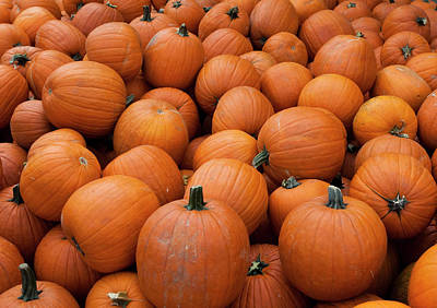 Photograph - Pile Of Pumpkins by Lorraine Devon Wilke