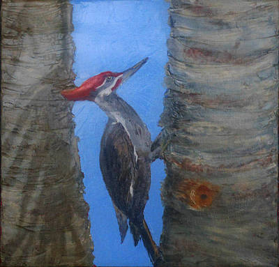 Painting - Pileated Woodpecker by Libby  Cagle