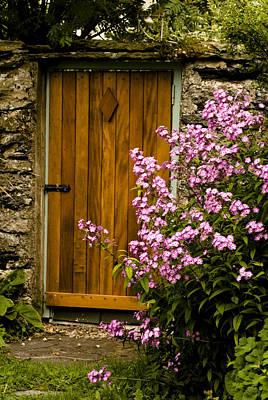 Pine Door Art Print by Peter Jenkins