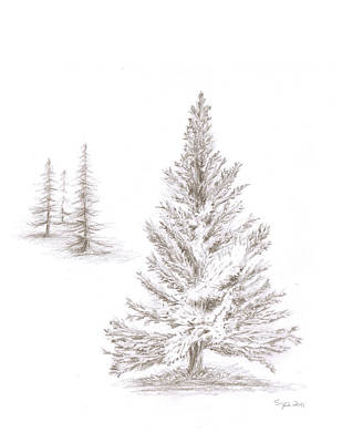 Drawing - Pine Grove by Steven Powers SMP