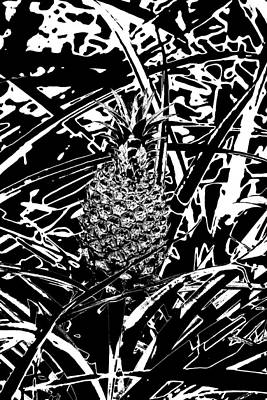 Photograph - Pineapple  by Elizabeth  Doran