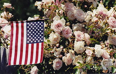 Photograph - Pink And Patriotic by Barbara Plattenburg