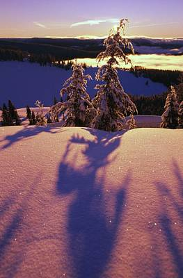 Pink And Purple Sunrise Shadows Of Snow Art Print by Natural Selection Craig Tuttle