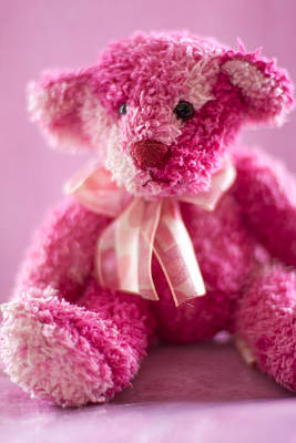 Photograph - Pink Bear Sat Alone by Ethiriel  Photography