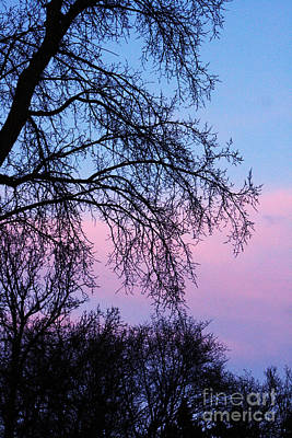 Photograph - Pink Blue Sky by Mary Mikawoz