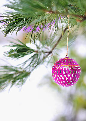 Photograph - Pink Christmas Ornament On Snowy Pine Tree Branch  by Marianne Campolongo
